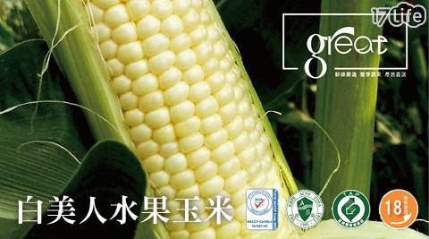 【鮮綠農產】18度高甜度白美人水果玉米