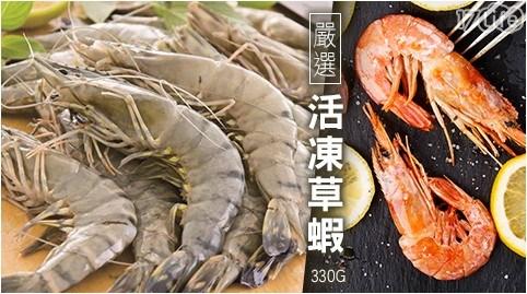 嚴選活凍草蝦