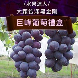 【水果達人】頂級外銷大顆飽滿黑金剛爆甜巨峰葡萄禮盒