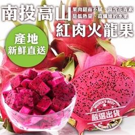 【天天果園】產地新鮮直送紅肉火龍果(約280g/顆)