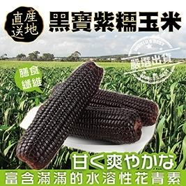 【WANG蔬果】黑寶紫糯米玉米(2~3支/斤)