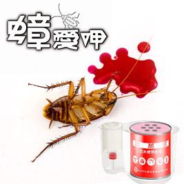 【蟑愛呷】必安住水蒸式白蟻衣魚殺蹣滅蟑劑30g(5入/組)