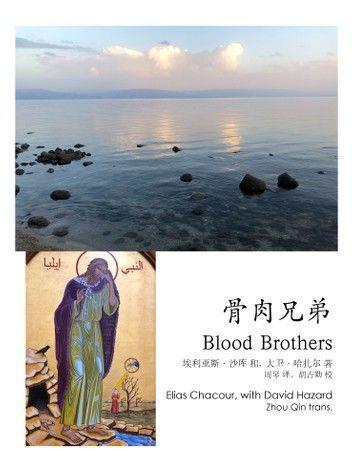 骨肉兄弟 Blood Brothers