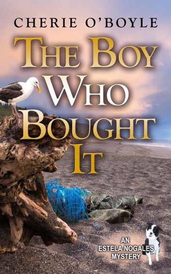 The Boy Who Bought It
