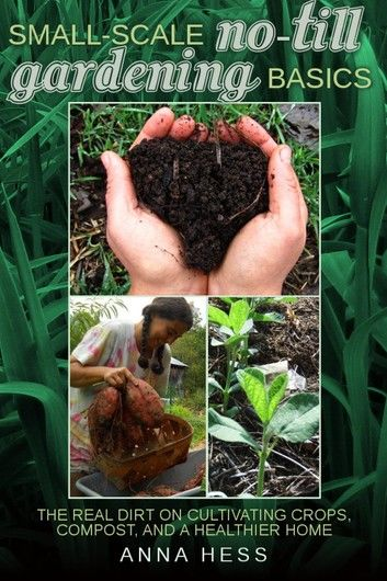 Small-Scale No-Till Gardening Basics