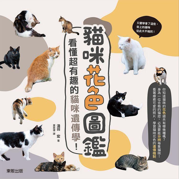 貓咪花色圖鑑:看懂超有趣的貓咪遺傳學!