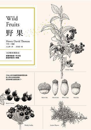 野果:183種果實踏查,梭羅用最後十年光陰,獻給野果的小情歌
