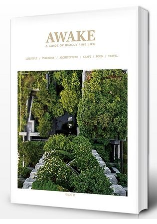 Awake醒著