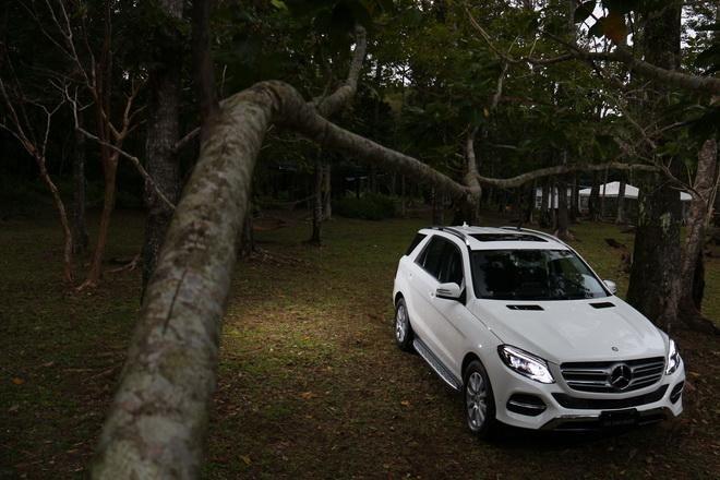 新身份 新面容 Mercedes-Benz The new GLE 250d 4MATIC豪華休旅車試駕