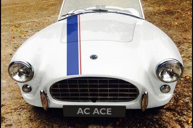 眼鏡蛇的崛起 AC Ace RS Electric